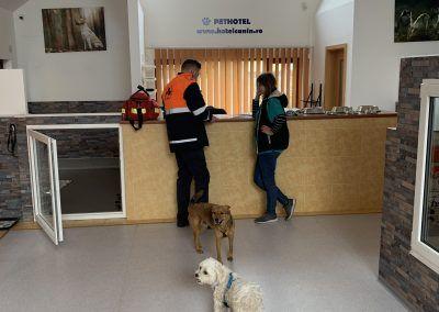 Hotel Canin Timisoara